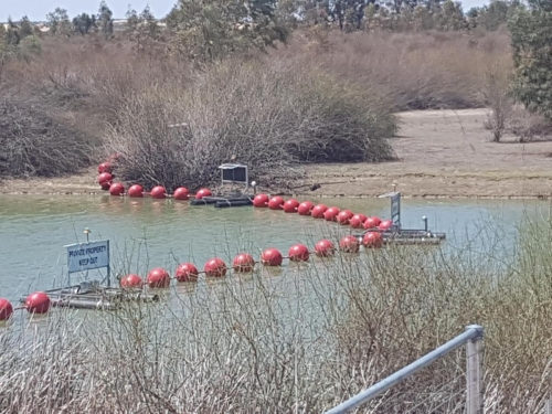 Red Round Buoys, Floating Barrier on Lake Victoria in SA -4